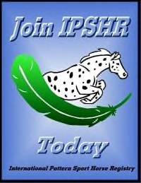 Link to International Pattern Horse Sport Horse Registry